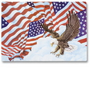 Hoffmaster 998844 901-FD206 Patriotic Flags Placemat