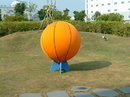 Everrich EVC-0046 Giant Basketball - 40