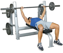 Olympic Bench With Weight Horns
