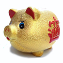 Feng Shui Import Piggy Bank - 1235