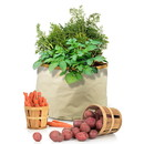 Homegrown Gourmet 233738 Harvest Grow Bag Root Vegetables 24