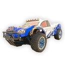 ALEKO RCC94170PRO-AP 94170PRO 4WD Brushless Battery Powered Off-Road Rally Truck 1/10 Scale