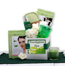 Gift Basket 819892 Eucalyptus Spa Care Package
