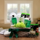 Gift Basket 8413972 Eucalyptus Spa Gift Basket