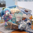 Gift Basket 890431-B Precious Petals Deluxe Moses Carrier - Blue