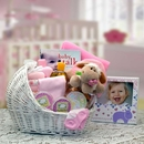 Gift Basket 89062-P Welcome Baby Baby Bassinet - Pink - Medium