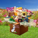 Gift Basket 914301 Family Fun Easter Care Package