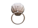 Handcrafted Model Ships TWH-111-BN Silver Finish Seashell Towel Holder 9&Quot;