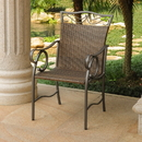 International Caravan Set of 2 Valencia Resin Wicker/Steel Chairs