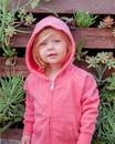 Independent Trading PRM10TSBZ Toddler Lightweight Special Blend Raglan Zip Hood