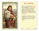 Ambrosiana 800-1012 Christ the Good Shepherd - Act of Contrition Holy Card
