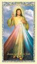 Ambrosiana 800-3200 Divine Mercy Laminated Holy Card - 25/Pk