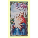 Christian Brands 800-448 Act of Consecration to the IHM Holy Card