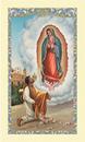 Ambrosiana 800-5680 Saint Juan Diego Laminated Holy Card