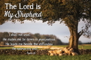 Christian Brands B4615 The Lord is My Shepherd Psalm 23