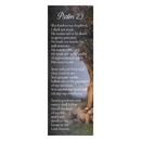 Christian Brands D2906 Bible Basics 10/pk - Psalm 23