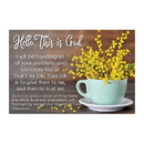 Christian Brands D3297 Pass It On Cards: Hello This Is God