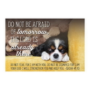Christian Brands F1263 Pass It On Cards - Do Not Be Afraid Of Tomorrow