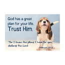 Christian Brands F1265 Pass It On Cards - Trust Him