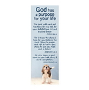 Christian Brands F1822 Bible Basics -  God Has A Purpose