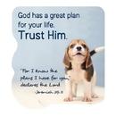 Christian Brands F2003 Shape Magnets - Trust Him