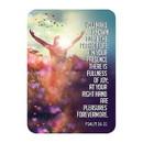Christian Brands F3403 Verse Card - Fullness of Joy