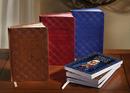 Aquinas Press YC080 Aquinas Press&Reg; Popular Catholic Novenas - Gift Edition