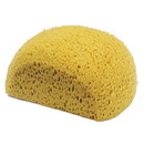 Intrepid International Large Body Sponge