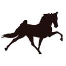 Intrepid International Horse Magnets - Sm Face Right Black