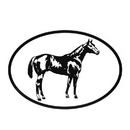 Intrepid International Decal - Quarter Horse