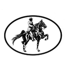 Intrepid International Decal - Saddlebred