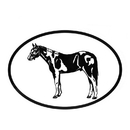 Intrepid International Decal - Paint Horse