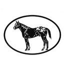 Intrepid International Decal - Appaloosa