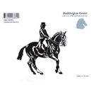 Intrepid International Decal Large Dressage Horse