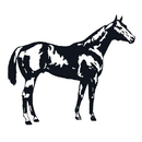 Intrepid International Decal Large Quarter Horse