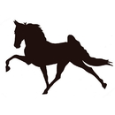 Intrepid International Decal Large Walking Horse