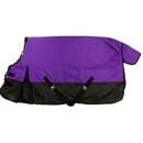Intrepid International Free Runner Blanket-Purple Two Tone