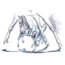 "Haddington Green Equestrian Art Jan Kunster Horse Prints - Venezia (Dressage), Print size 7 3/4"" x 11 3/4"" matted"