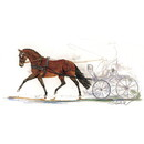 Haddington Green Equestrian Art Jan Kunster Horse Prints - Stefano (Driving)
