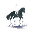 "Haddington Green Equestrian Art Jan Kunster Horse Prints - Baccara (Dressage), Print size 19 3/4"" x 27 1/2"""