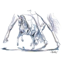 "Haddington Green Equestrian Art Jan Kunster Horse Prints - Venezia (Dressage), Print size 19 3/4"" x 27 1/2"""
