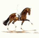 Jan Kunster Horse Prints - Primavera (Dressage)