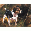 Dogs - Jack (Jack Russell) - 6 pack