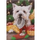 Haddington Green Equestrian Art HGC502X Christmas Cards - Great Expectations - 10 Pack