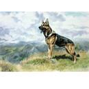 Sally Mitchell Fine Art Dog Prints - Master of all He Surveys