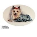 Sally Mitchell Fine Art Dog Prints - Yorkshire Terrier