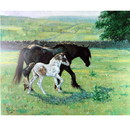 Malcom Coward Horse Prints - Heading for Shade (Draft Horse)