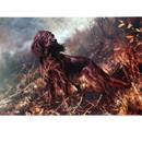 Sally Mitchell Fine Art Dog Prints - Irish Setter, Mick Cawston 14