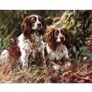 Sally Mitchell Fine Art Dog Prints - Pair of Spaniels