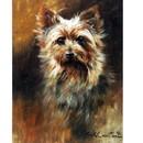 Sally Mitchell Fine Art Dog Prints - The Yorkie